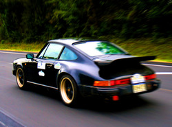 carolina_trophys 1984 Porsche 911