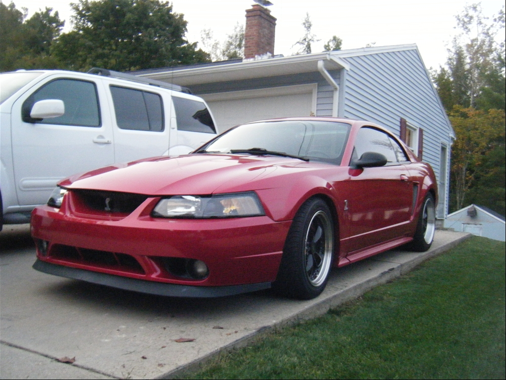 01 Mustang Cobra For Sale  10 000