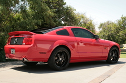 HMNTRCHs 2005 Ford Mustang