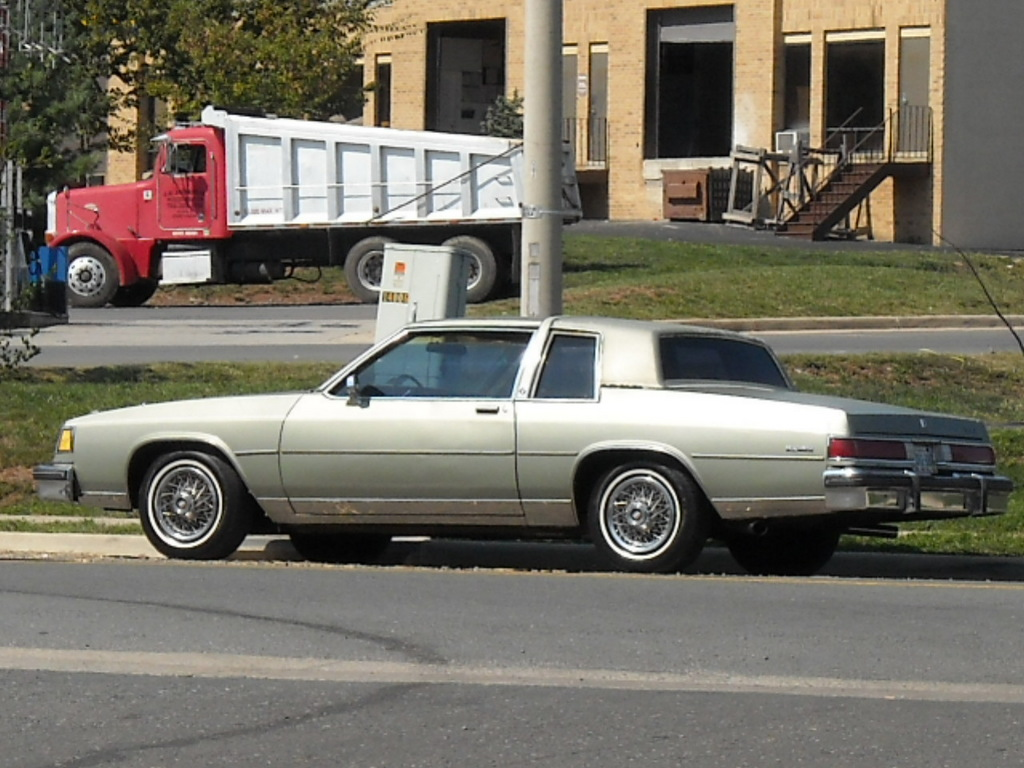 Large on 1985 Buick Lesabre Limited Collectors Edition