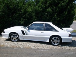 lacasse08s 1990 Ford Mustang