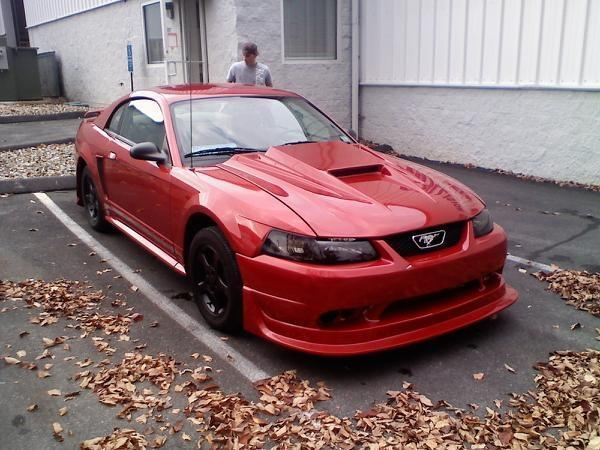 Another Holowaty 2001 Ford Mustang post... - 12337988