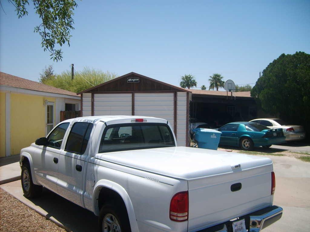 Another spicy_1 2004 Dodge Dakota Regular Cab & Chassis post... - 12378676
