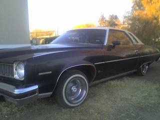 Another elias1984 1974 Pontiac LeMans post... - 12384779