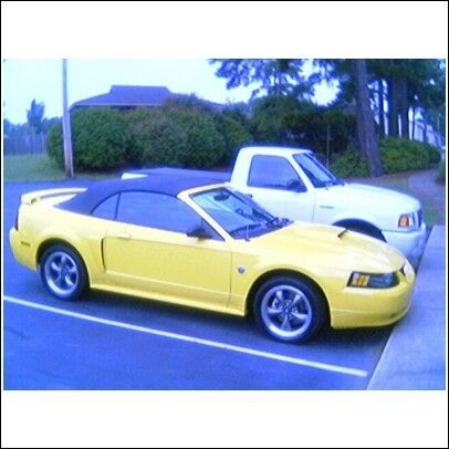 Another Kiko Jones 2004 Ford Mustang post... - 11742930