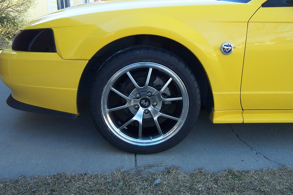 Another Kiko Jones 2004 Ford Mustang post... - 11744113