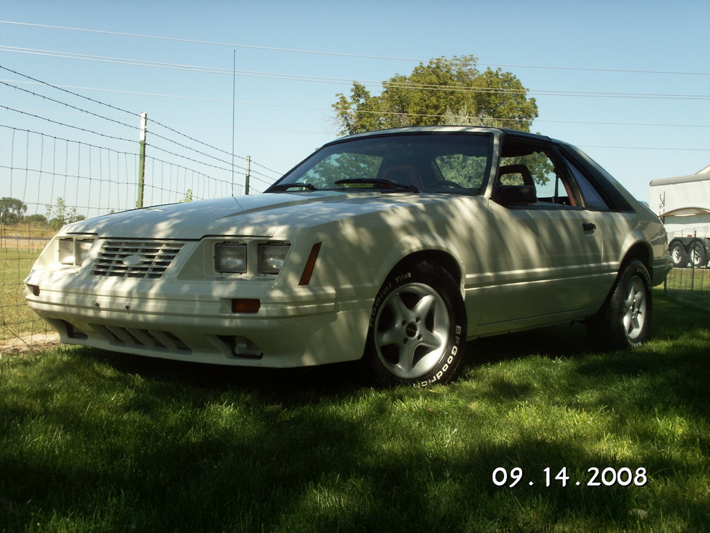 84_GT350 1984 Ford Mustang 12394060