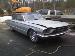 Messina13 1966 Ford Thunderbird