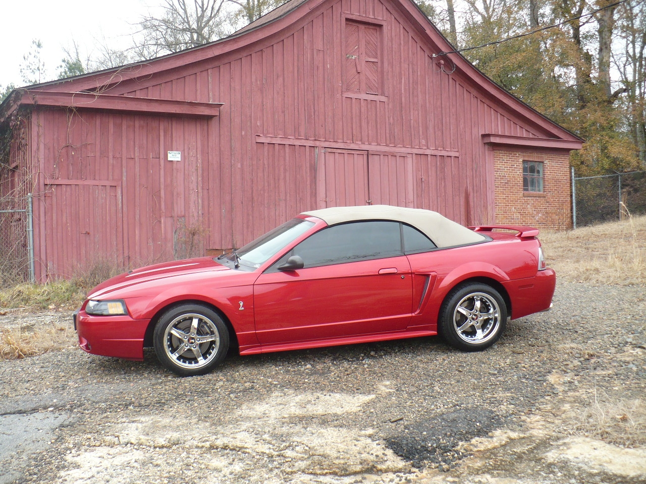 Another matthew91 2001 Ford Mustang post... - 12396937