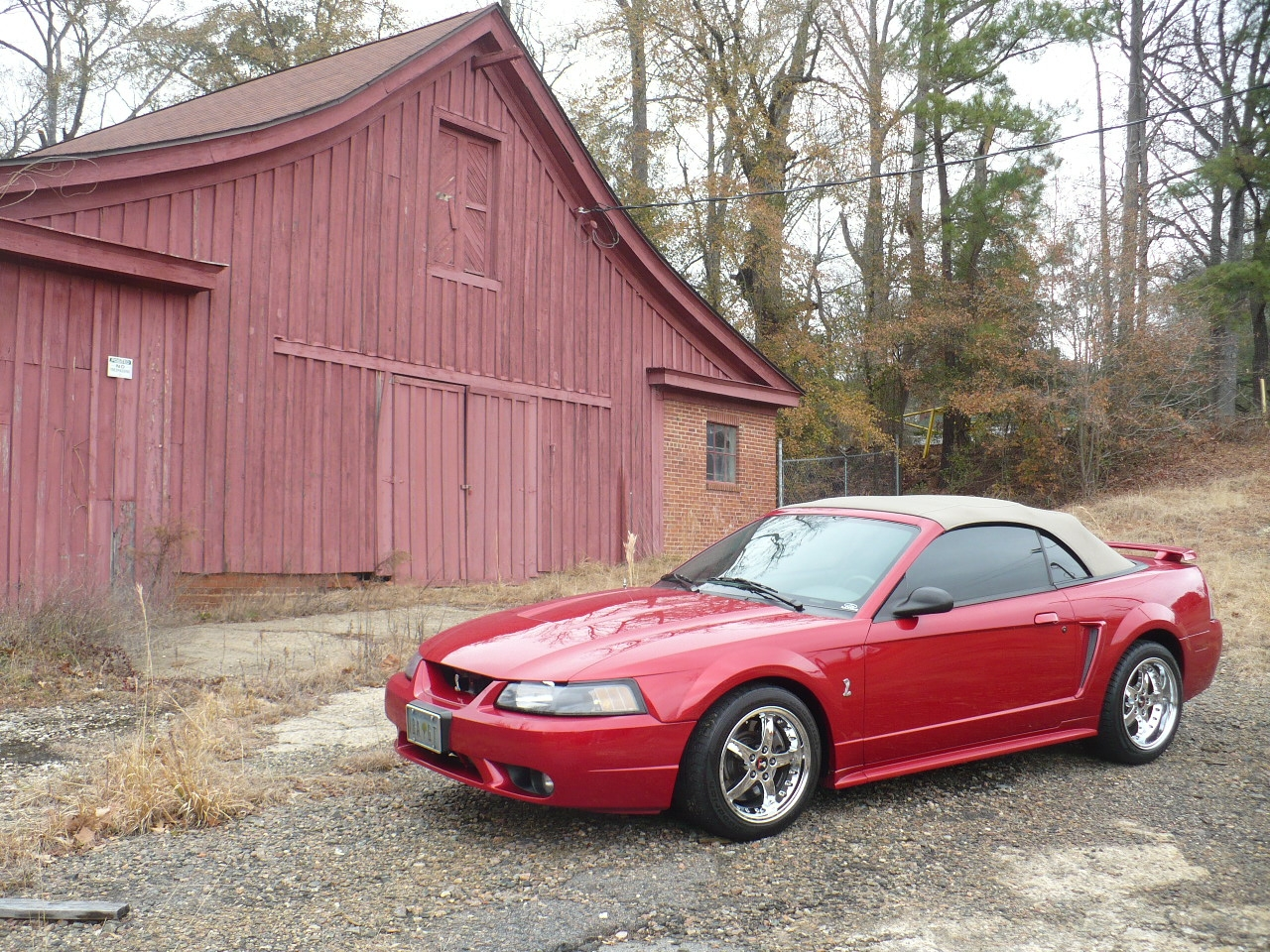 Another matthew91 2001 Ford Mustang post... - 12396938