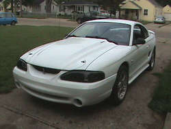 Wyldshelbys 1995 Ford Mustang
