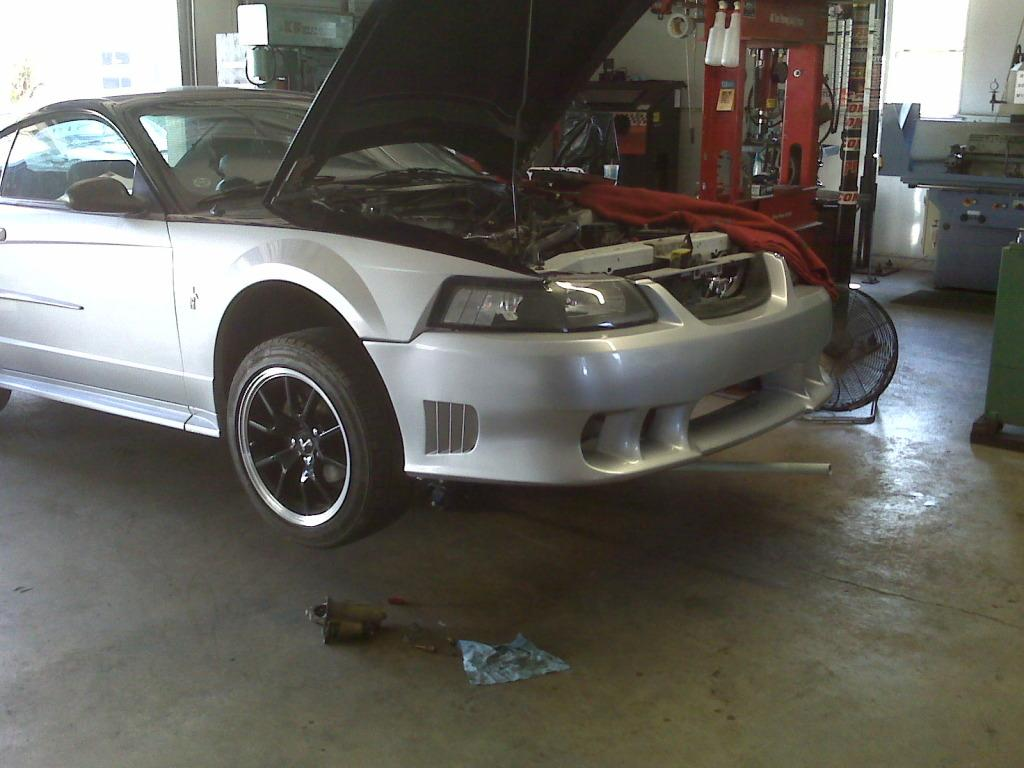 OneBadSixxx 2002 Ford Mustang 12410916