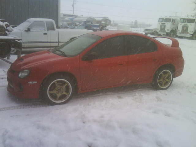 Another powerwagonlover 2003 Dodge Neon post... - 12518823