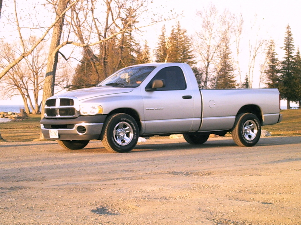 lowerexpactions 2002 dodge ram 1500 regular cab specs photos modification info at cardomain. Black Bedroom Furniture Sets. Home Design Ideas