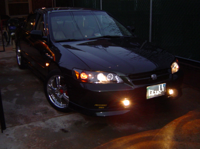 Bull_002 2000 Honda Accord 12420061