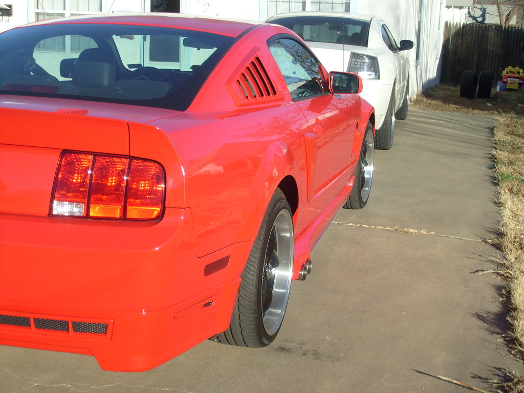 rodthestud 2008 Ford Mustang 12426560