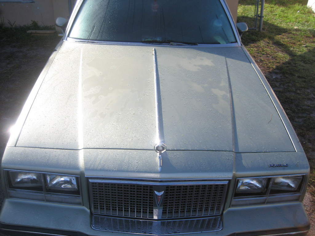 Another 1985Bonneville 1985 Pontiac Bonneville post... - 12439904