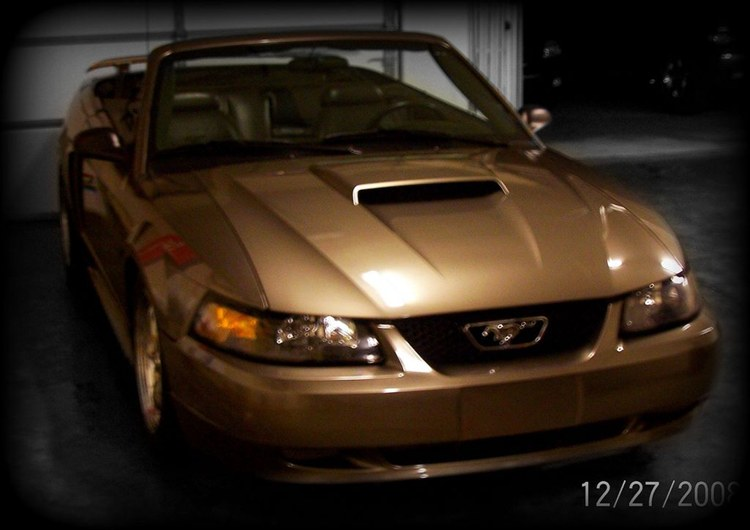 Another RidinLow43 2001 Ford Mustang post... - 12431194