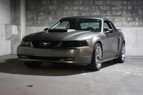 Another RidinLow43 2001 Ford Mustang post... - 12431204