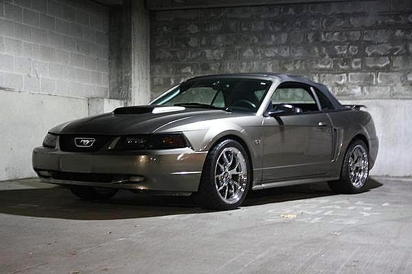 Another RidinLow43 2001 Ford Mustang post... - 12431206