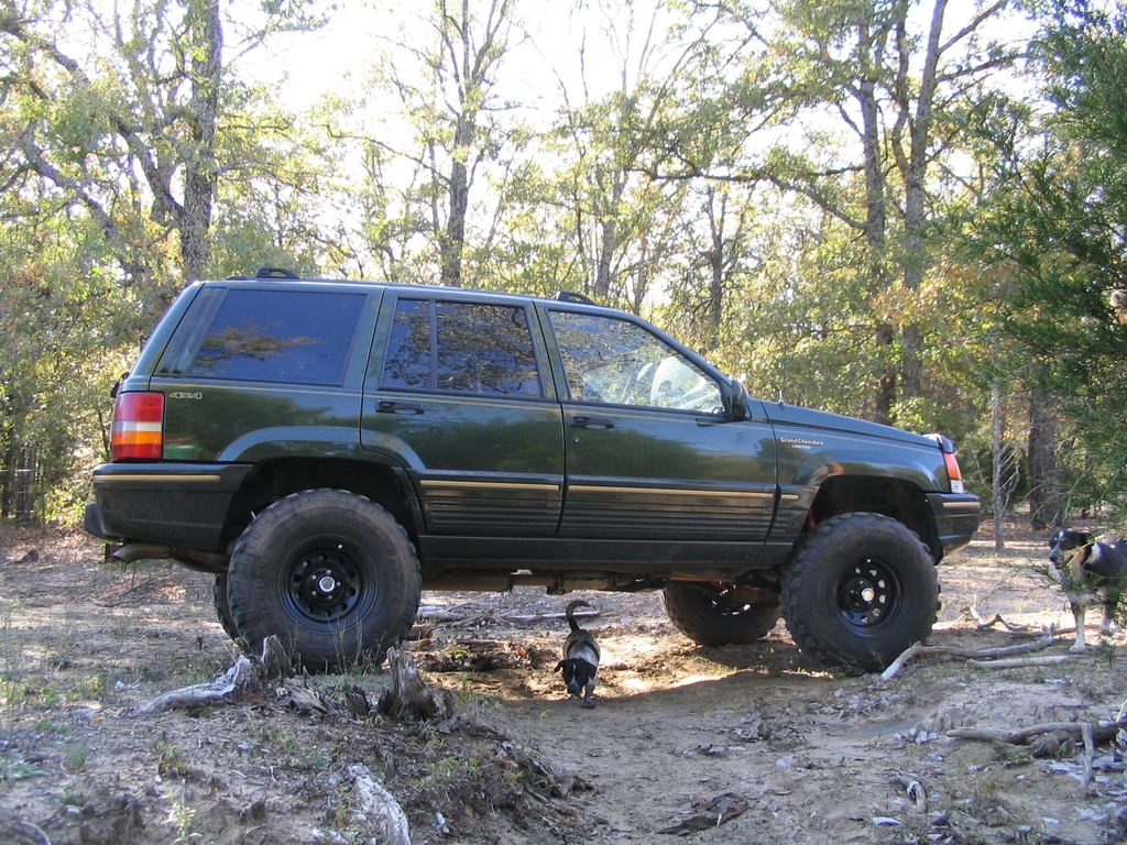chadwurm81 1995 jeep grand cherokee specs photos modification info at cardomain. Black Bedroom Furniture Sets. Home Design Ideas