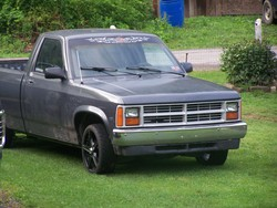 blizzardjimmy 1988 Dodge Dakota Regular Cab & Chassis