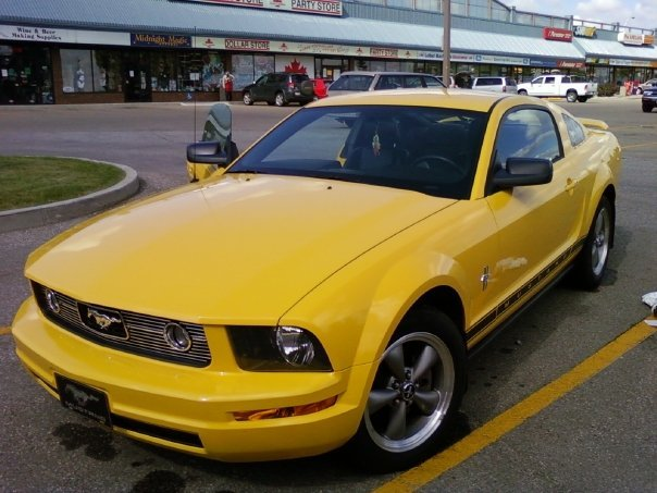 Another potterstoy 2006 Ford Mustang post... - 12444577