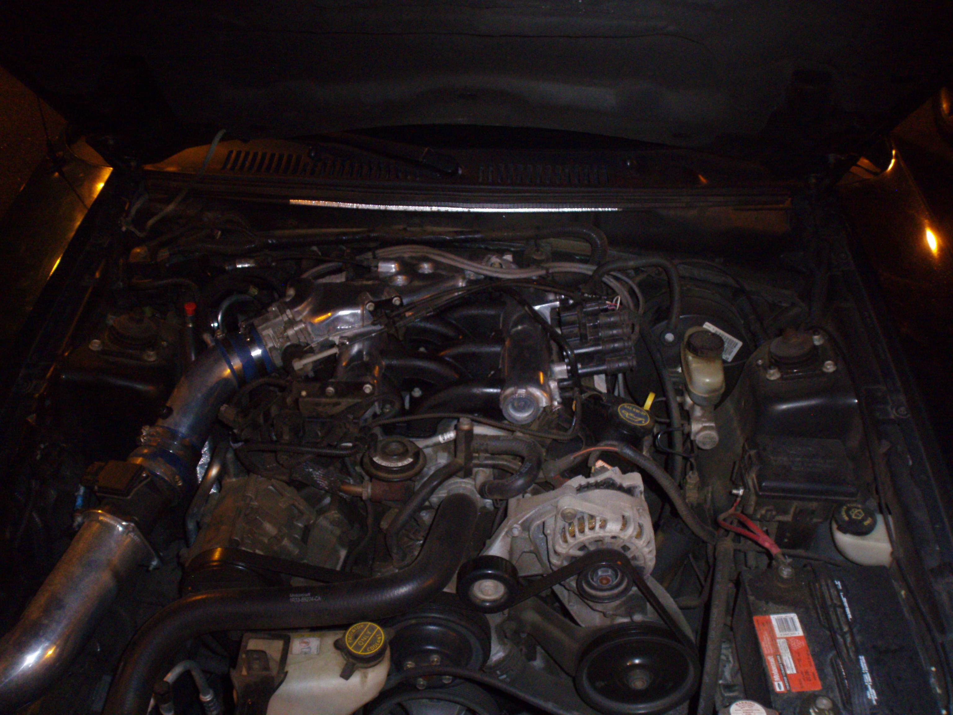 Another greenstang2003 2003 Ford Mustang post... - 12483836