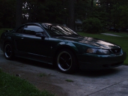 greenstang2003s 2003 Ford Mustang