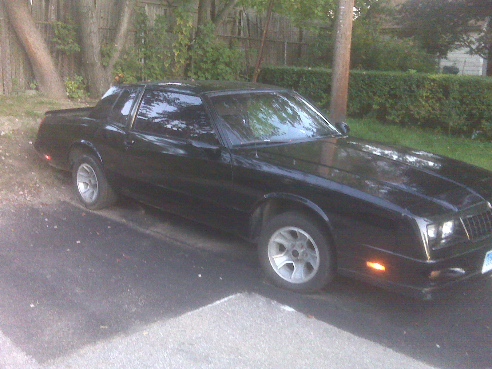 Another mbleek 1987 Chevrolet Monte Carlo post... - 6057759