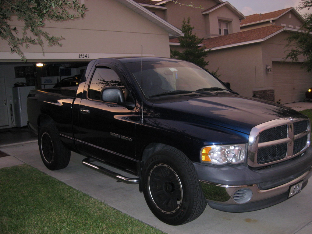 zim0989 2002 dodge ram 1500 regular cab specs photos modification info at cardomain. Black Bedroom Furniture Sets. Home Design Ideas