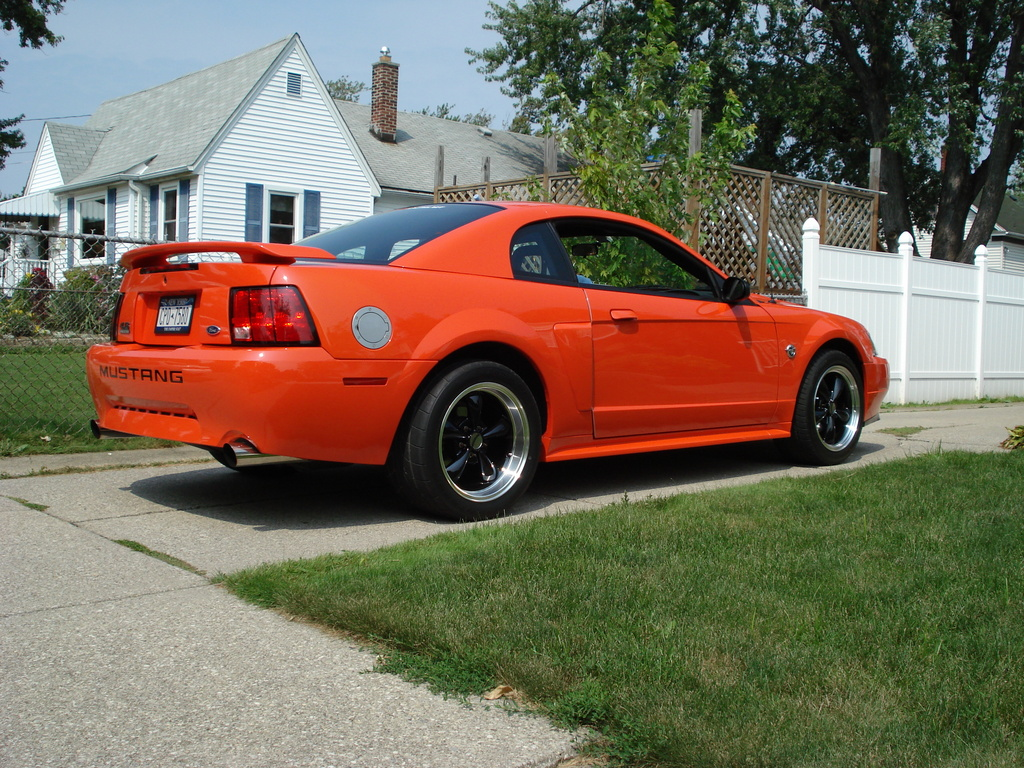 Goldg6 2004 Ford Mustang Specs Photos Modification Info