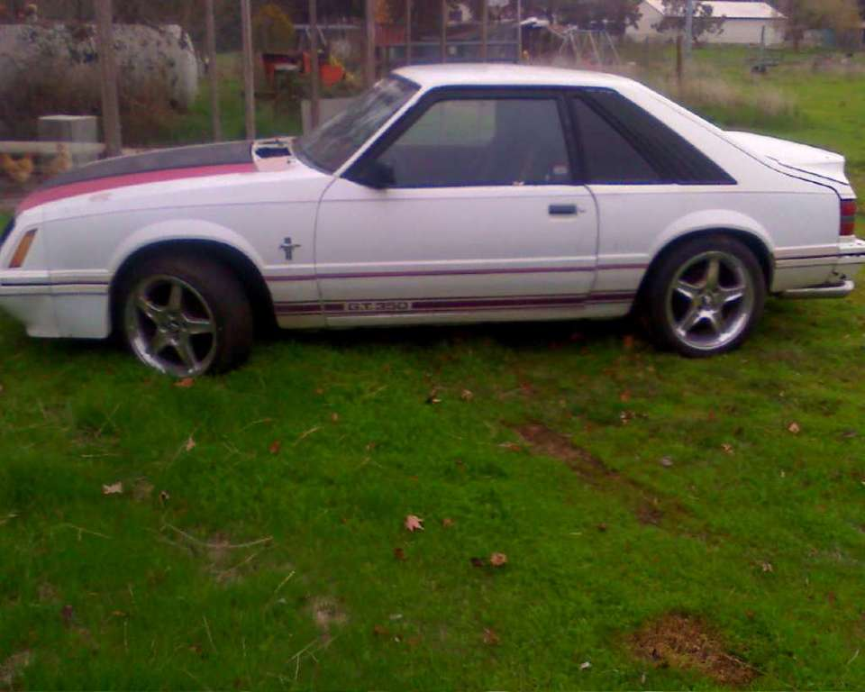 Anny-Mustang's 1984 Ford Mustang
