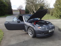 TarkMalbots 2008 Mazda Miata MX-5