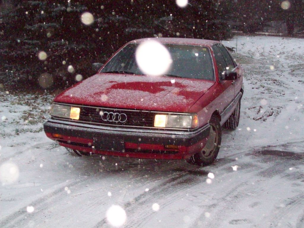 Qwalude4ws 1986 Audi 5000 12526325
