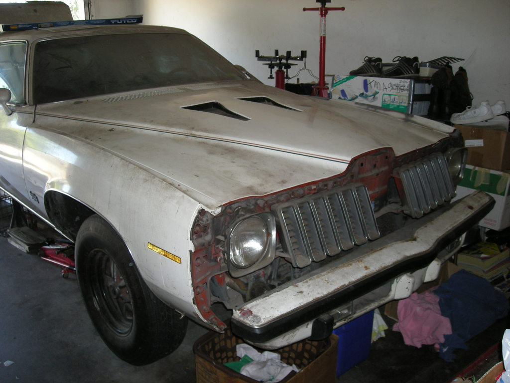 ponchoV8 1974 Pontiac Grand Am 12534444
