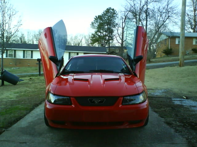 Another krash-a-stang 2000 Ford Mustang post... - 12533422