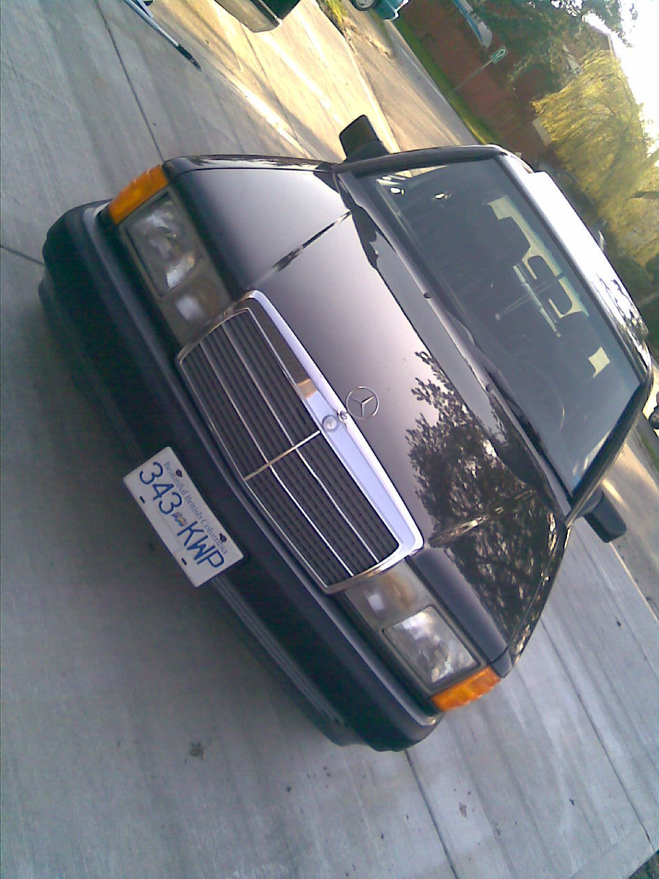 Another Mannysworld09 1989 Mercedes-Benz 190-Class post... - 12541258