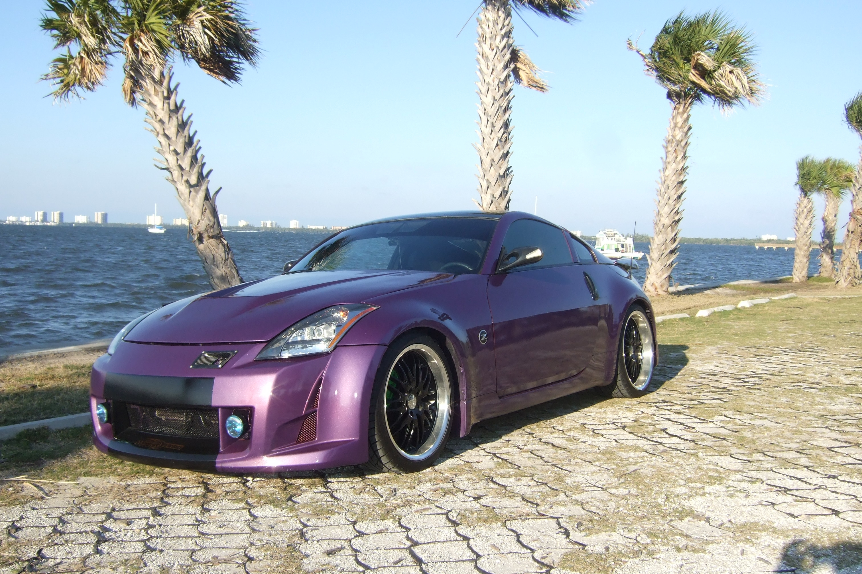 elitefitness24 2003 Nissan 350Z Specs, Photos, Modification Info at