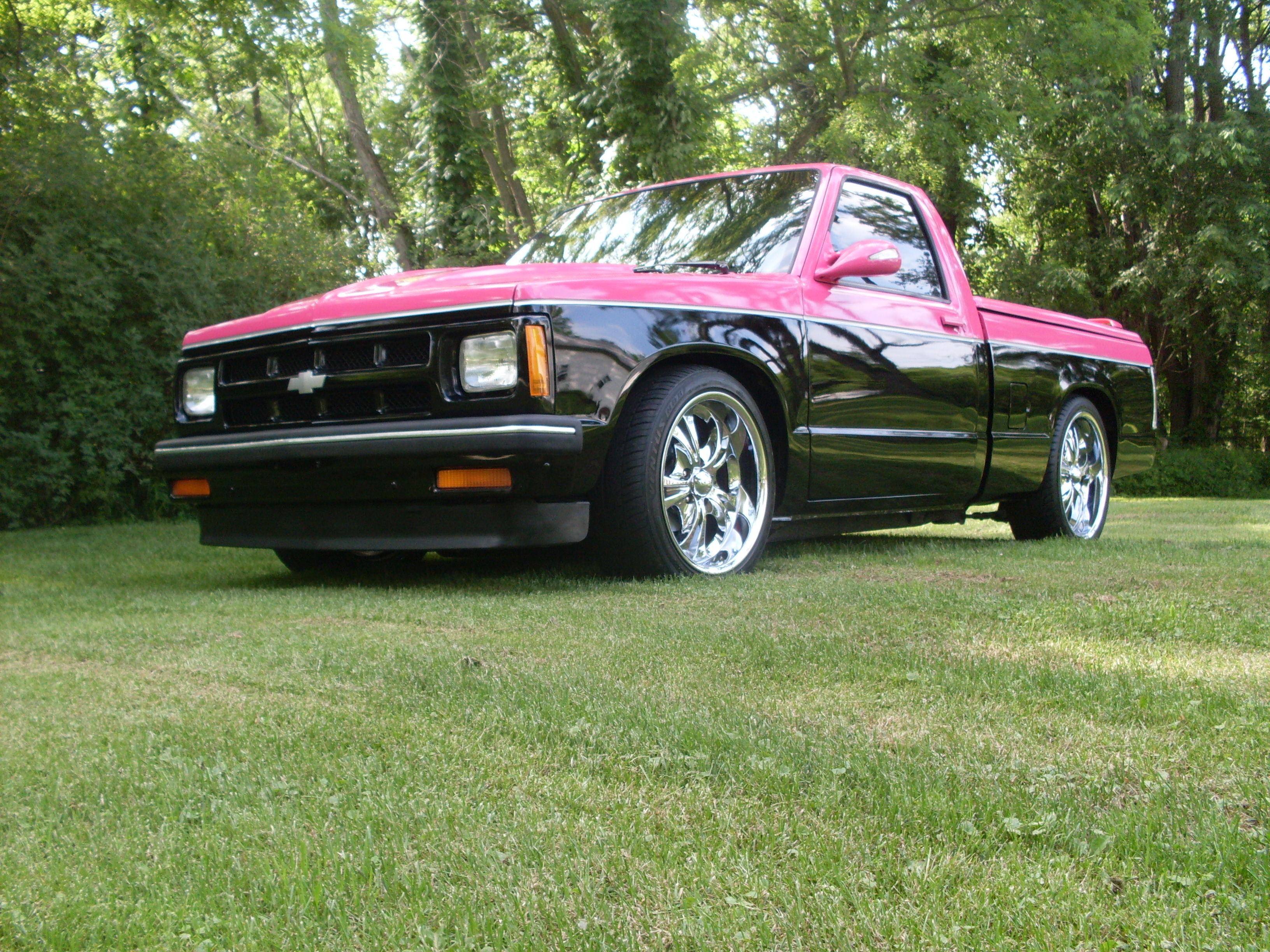 dakotadiann 1993 chevrolet s10 regular cab specs photos modification info at cardomain. Black Bedroom Furniture Sets. Home Design Ideas