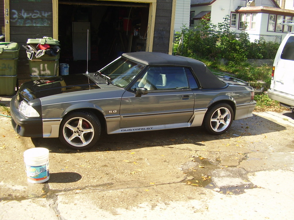 Another oldgee 1989 Ford Mustang post... - 12553724