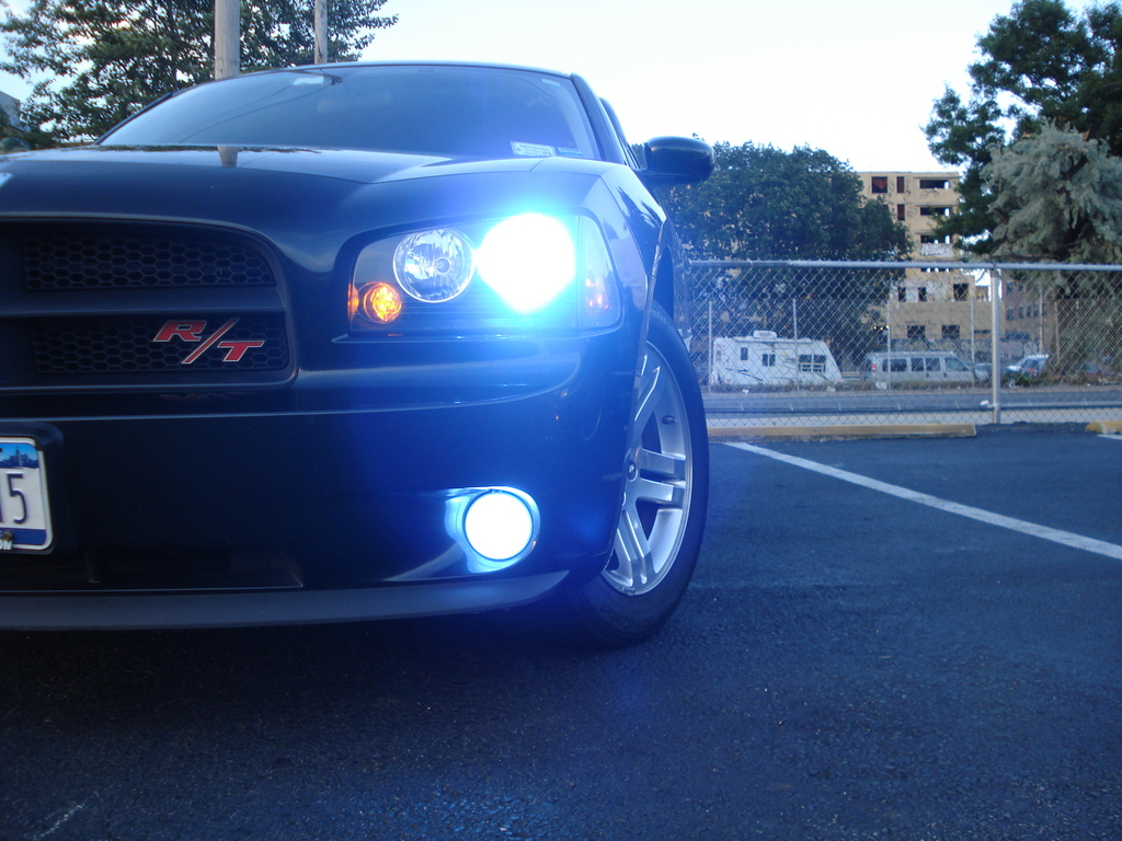 prmale 2006 Dodge Charger 12568583