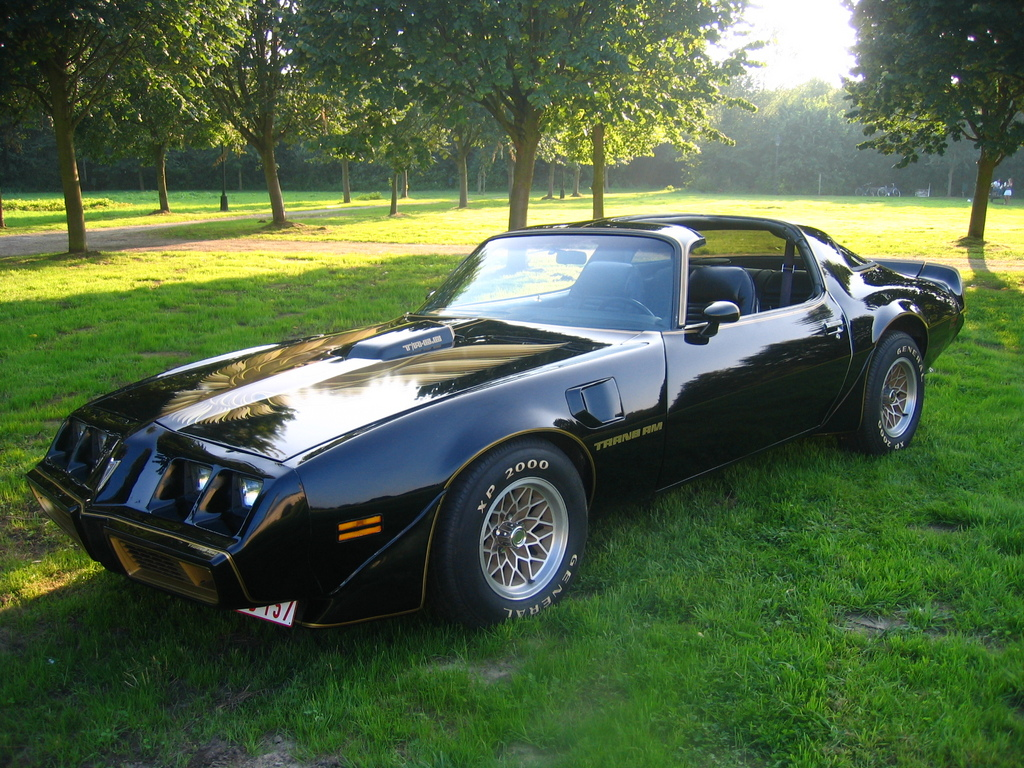 tommy11 1979 pontiac trans am specs photos modification