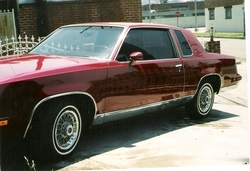 LADGR14s 1981 Oldsmobile Cutlass Supreme