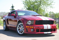 michael112402s 2005 Ford Mustang