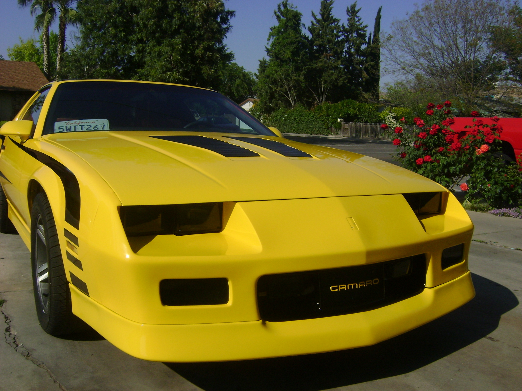 89iroc z559 1989 chevrolet camaro specs photos modification info at cardomain. Black Bedroom Furniture Sets. Home Design Ideas