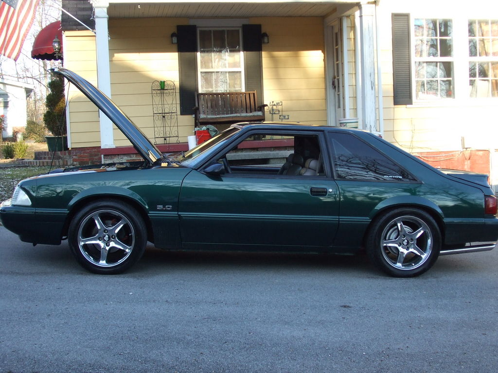 75fjpeter 1992 Ford Mustang 12597663