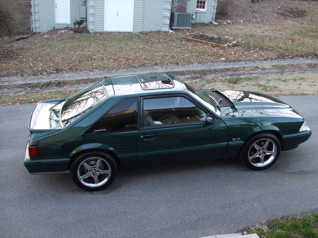 75fjpeter 1992 Ford Mustang 12597667