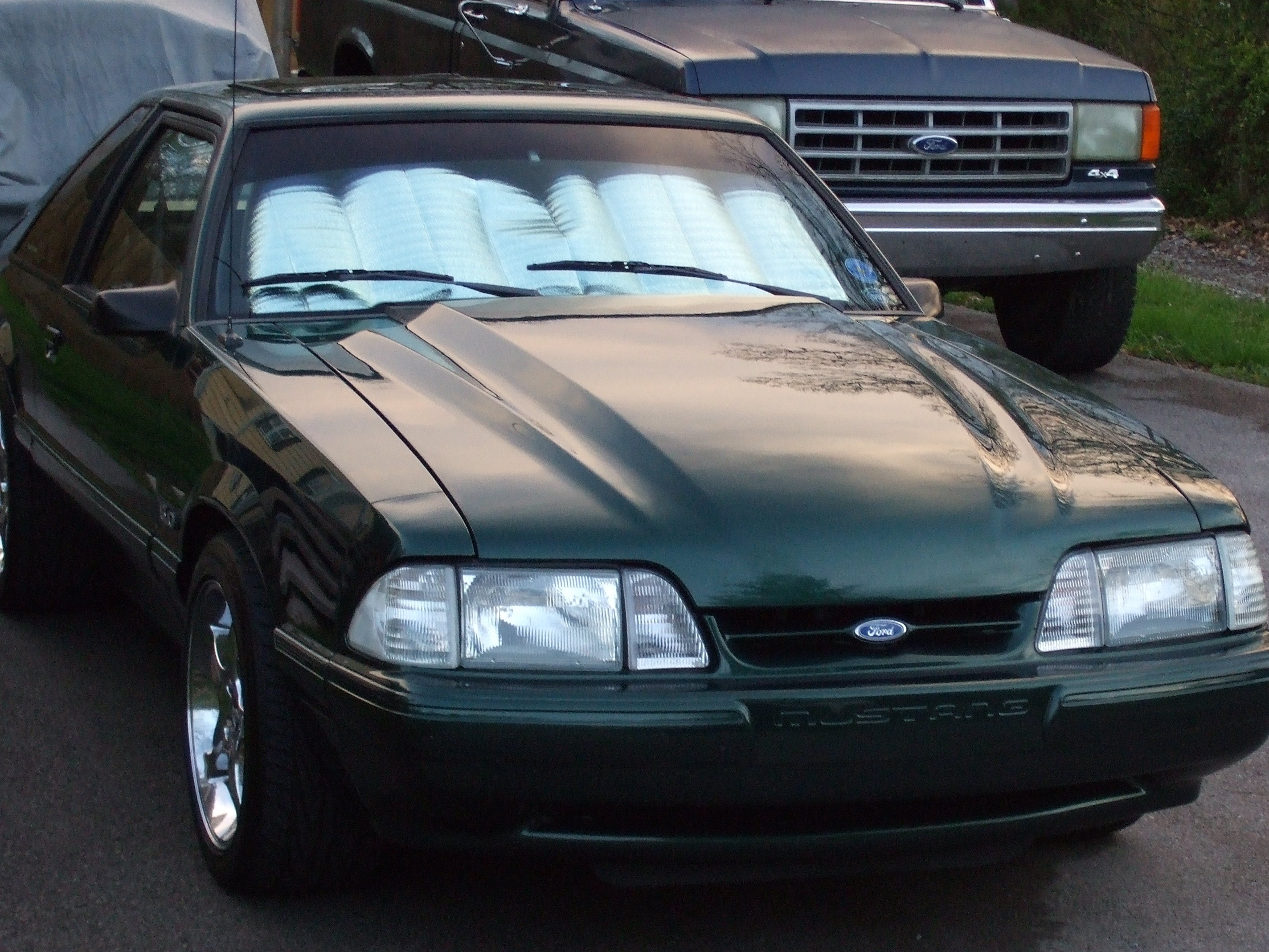 75fjpeter 1992 Ford Mustang 12597705
