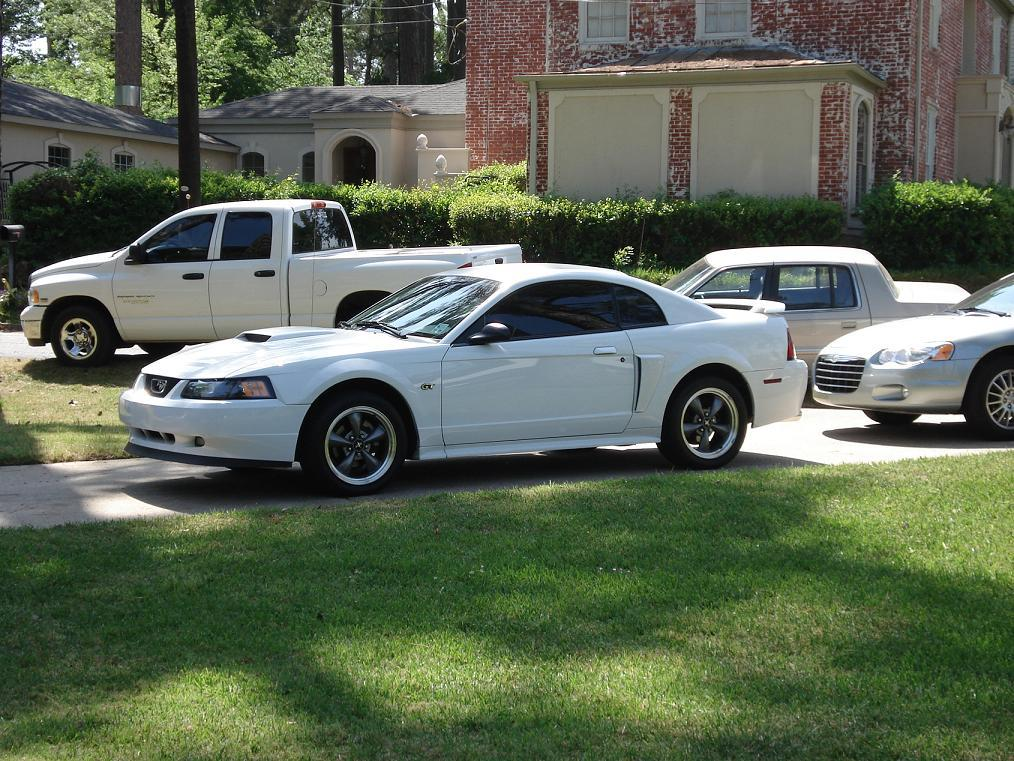 stangfevergt03 39 s 2003 ford mustang in shreveport la. Black Bedroom Furniture Sets. Home Design Ideas